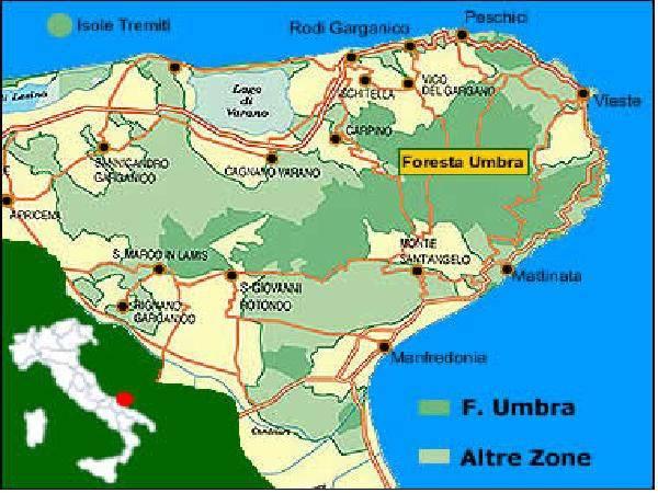 Terreno sul Gargano-Peschici Località stazione di Calenella Rif. 8886878