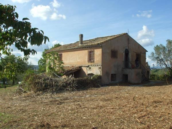 Calvi dell'Umbria (TR) Casale con ampio terreno