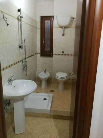 Appartamento in ottime condizioni in affitto Rif. 5072585