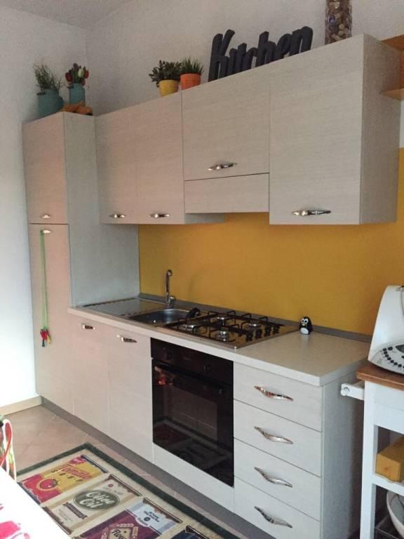 Appartamento in ottime condizioni parzialmente arredato in affitto Rif. 8887721