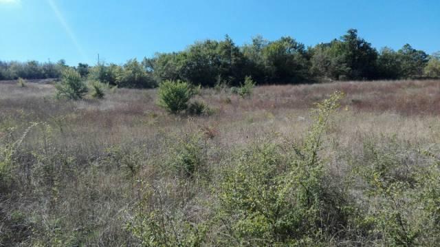 Terreno agricolo a Bagnoli del Trigno Rif. 4272832