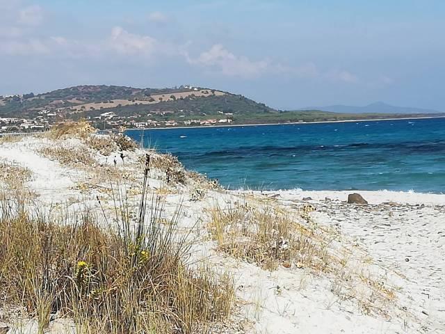 Siniscola vicino alla spiaggia di Capo Comino