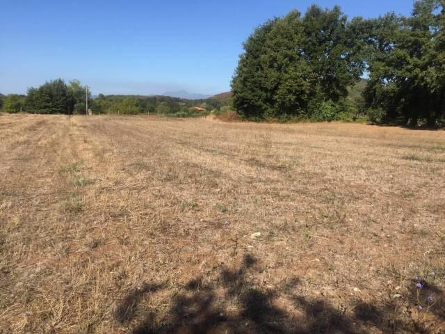 Terreno agricolo in Vendita a Roccaromana Rif.12383028