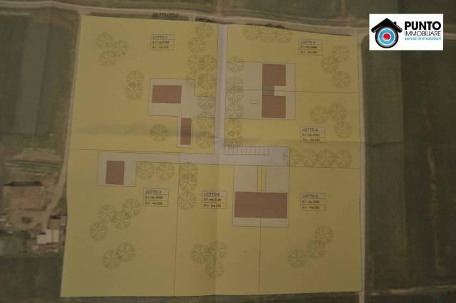 Terreno residenziale in Vendita a Sant'Agata Bolognese: 5000 mq