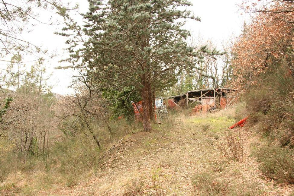 Terreno residenziale in Vendita a Arezzo: 12000 mq