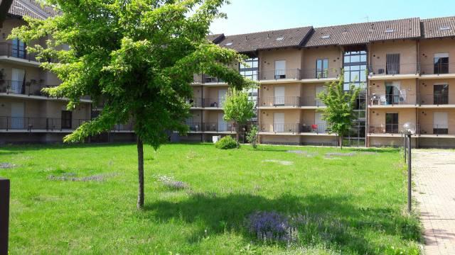 Appartamento in buone condizioni in affitto Rif. 4895725