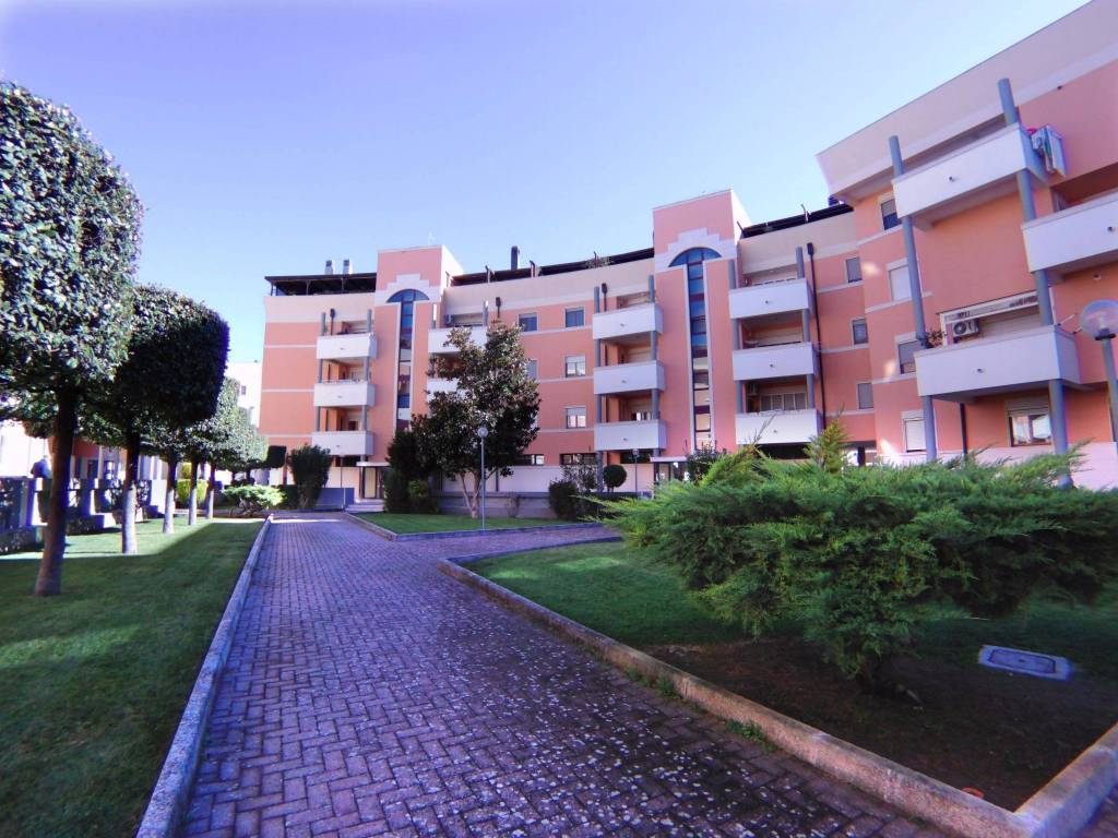 Appartamento in ottime condizioni arredato in affitto Rif. 8505002