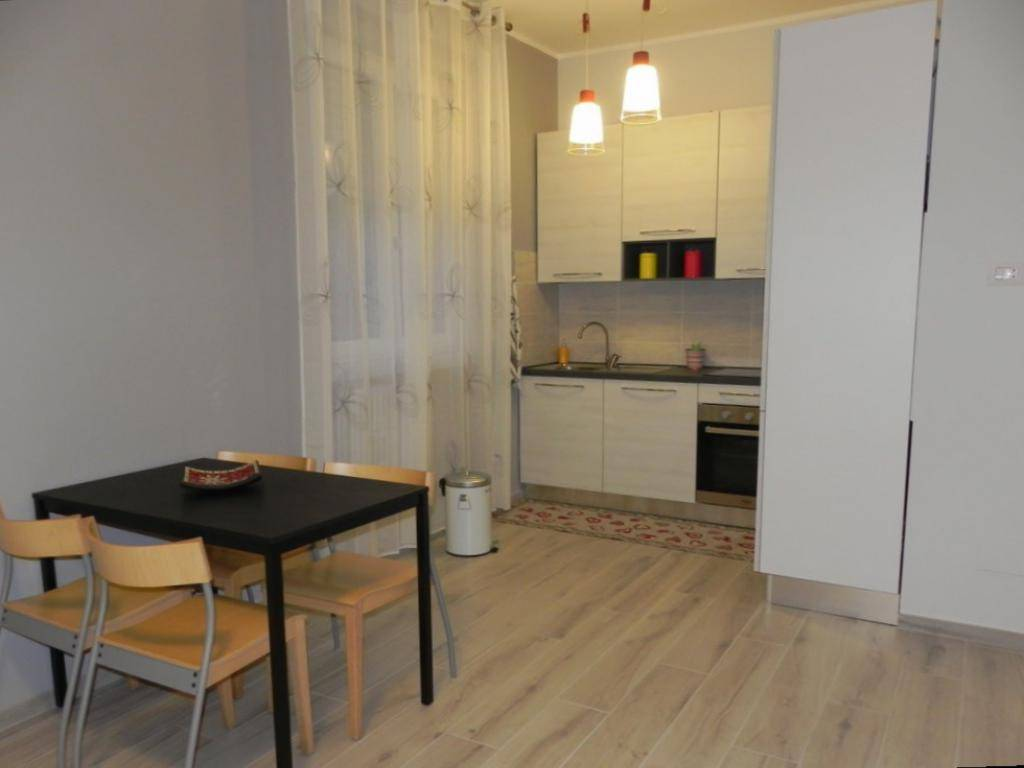 Appartamento in ottime condizioni arredato in affitto Rif. 7766960