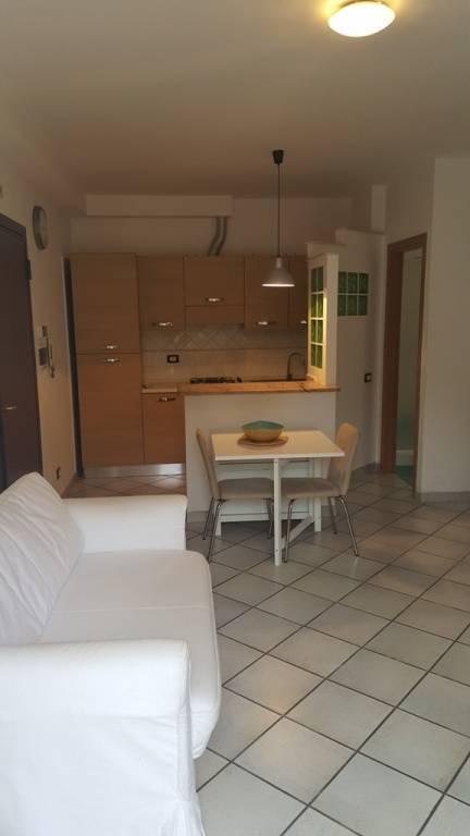 Appartamento in ottime condizioni arredato in affitto Rif. 8340683