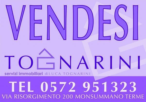Monsummano Terme Capannone 2730 mq. piazzale 2590 mq. Rif. 4249339