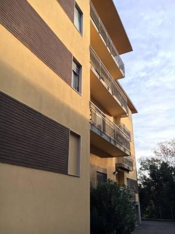 Appartamento in ottime condizioni in affitto Rif. 4401427