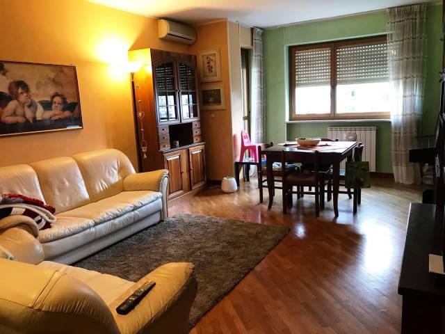 Appartamento trilocale in affitto a Cuneo (CN)