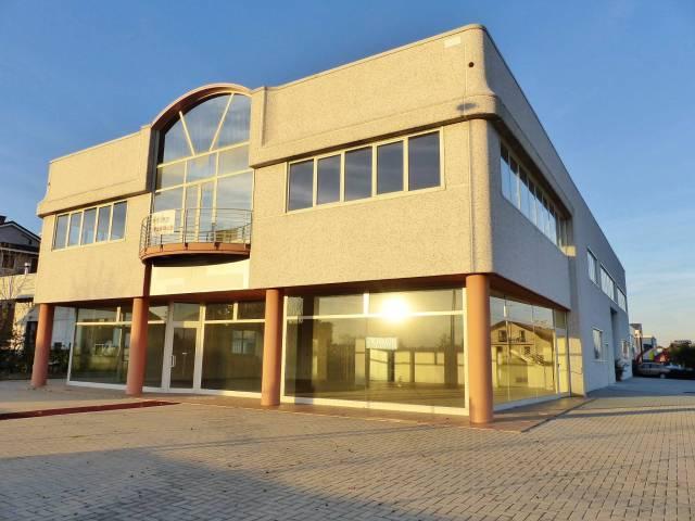 Capannone 5 locali in affitto a Cuneo (CN)