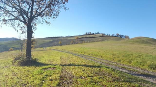 Terreni agricoli in vendita a quattro castella cerca con - Melloni immobiliare ...