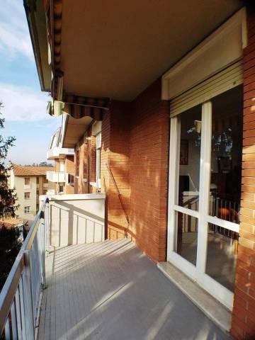 Appartamento in buone condizioni arredato in affitto Rif. 7003063