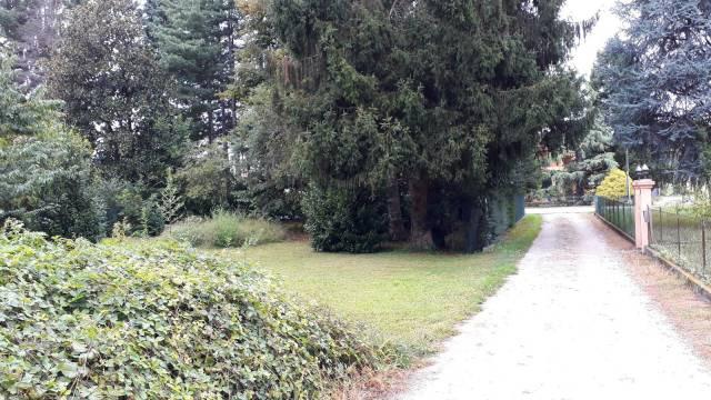Terreno Edificabile Residenziale in Vendita a Ispra