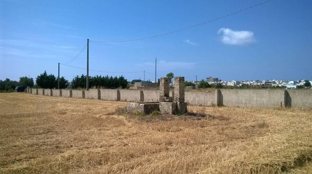 Terreno commerciale in Vendita a Castrignano Del Capo: 15431 mq
