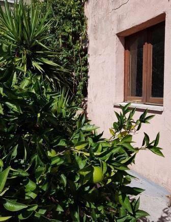 Antica e spaziosa casa da ristrutturare con grande giardino