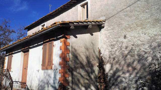 Rustico - Cascina VITERBO vendita   Salemme REALE studio immobiliare