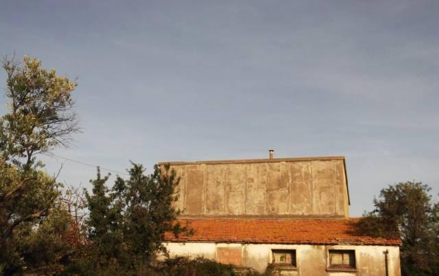 Si vendono ettari 5 di terreno agricolo Rif.13474978