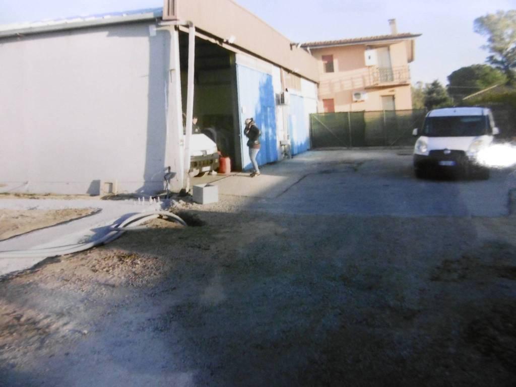 Capannoni varie metrature in Via Lunga Rif. 8066208
