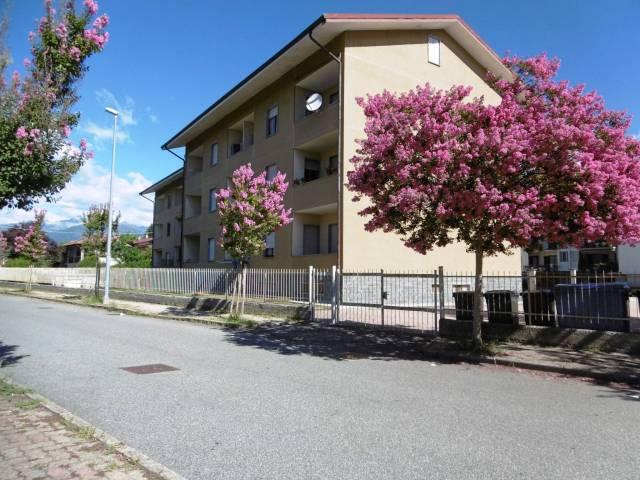 Appartamento in buone condizioni arredato in affitto Rif. 4205388