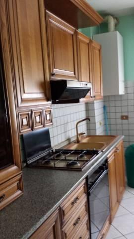Appartamento in buone condizioni arredato in affitto Rif. 7202381