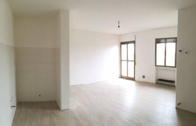 Appartamento in ottime condizioni in affitto Rif. 4811023