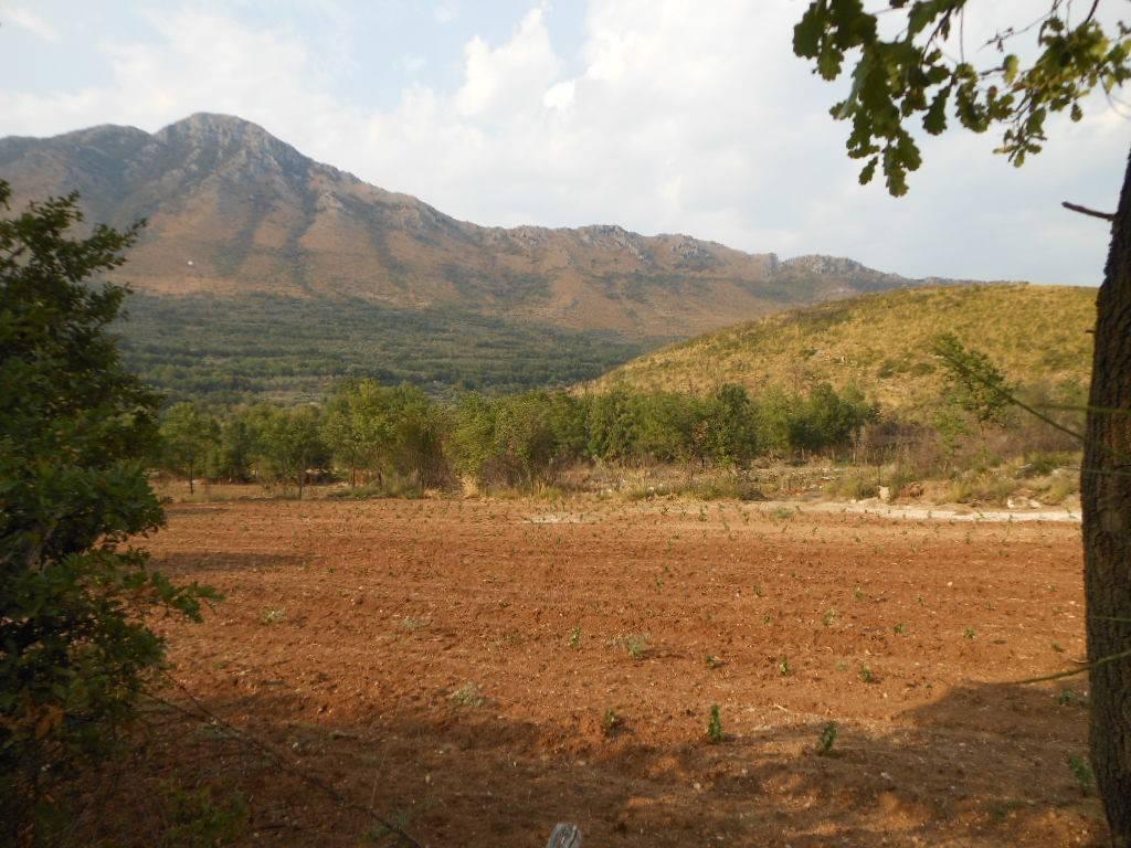 Terreno Agricolo in vendita a San Pietro Infine, 9999 locali, prezzo € 480.000 | CambioCasa.it