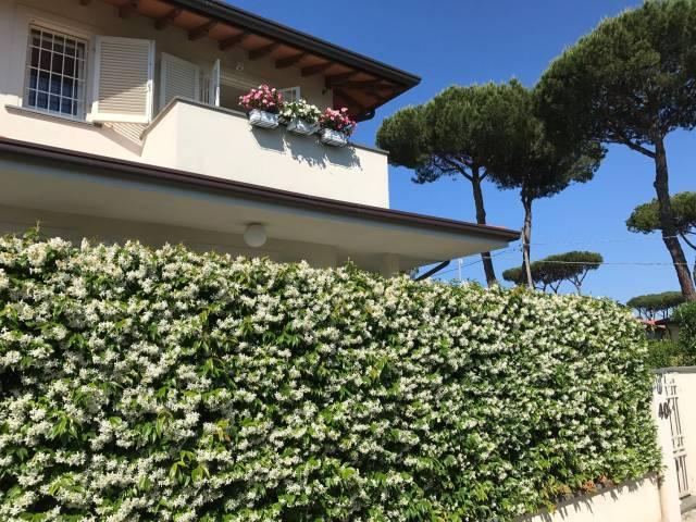 Villa in Vendita a Pietrasanta Centro: 4 locali, 105 mq