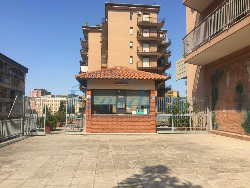 Appartamento in Vendita a Catania Centro:  3 locali, 85 mq  - Foto 1