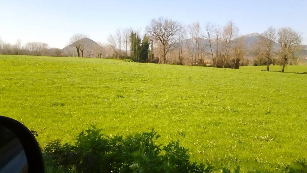 Terreno Agricolo in vendita a Caiazzo, 9999 locali, prezzo € 34.000 | CambioCasa.it