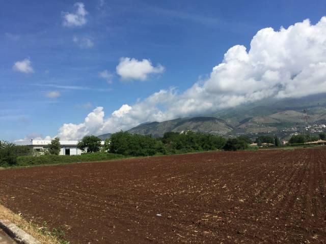Terreno industriale, Piedimonte San Germano Rif.13844338