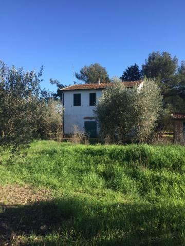 Villa 5 locali in vendita a Capalbio (GR)