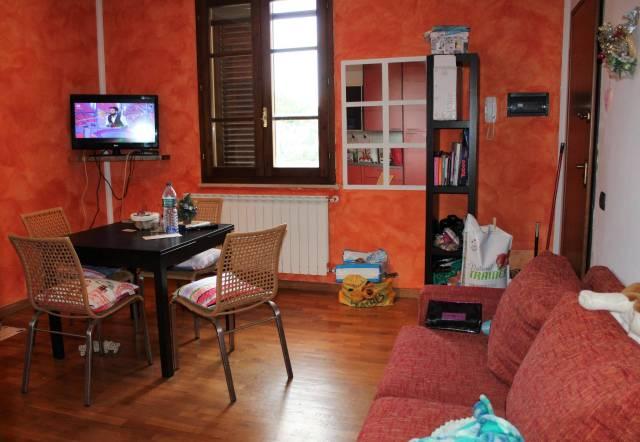 Appartamento bilocale in affitto a Vicopisano (PI)