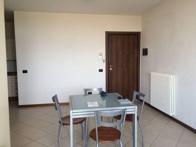Appartamento bilocale in affitto a Castelfranco Emilia (MO)