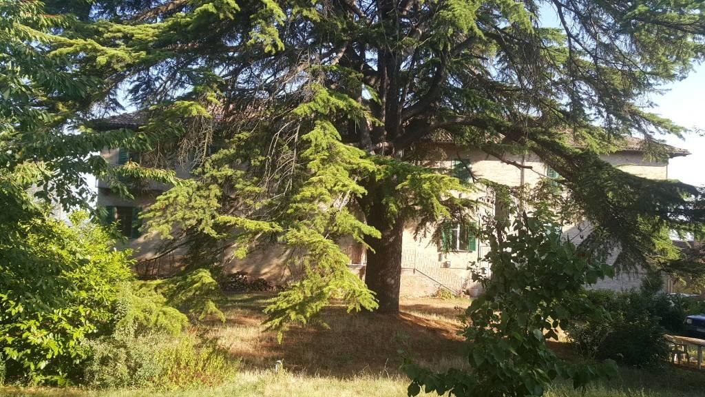 Palazzo / Stabile in vendita a Agliano Terme, 25 locali, prezzo € 300.000 | PortaleAgenzieImmobiliari.it