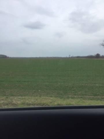 Mesola - Appezzamento di terreno agricolo di 7 Ettari Rif.13969384