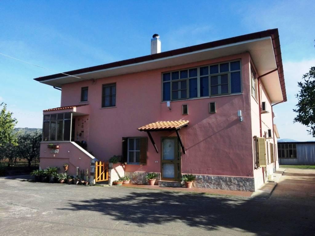 Appartamento in buone condizioni in vendita Rif. 8355817