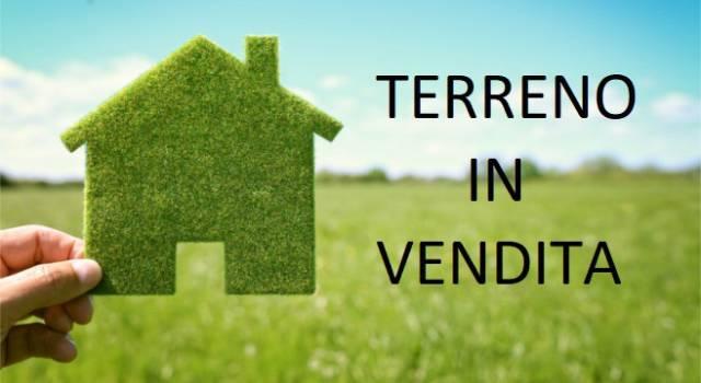 Terreno commerciale in Vendita a Milano 28 Vialba / Musocco / Lampugnano: 100000 mq