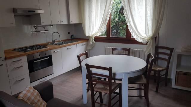 Appartamento in ottime condizioni in affitto Rif. 4517894