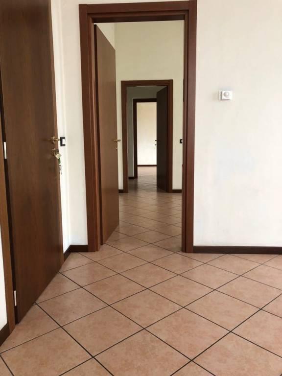 Appartamento in buone condizioni in affitto Rif. 5698846