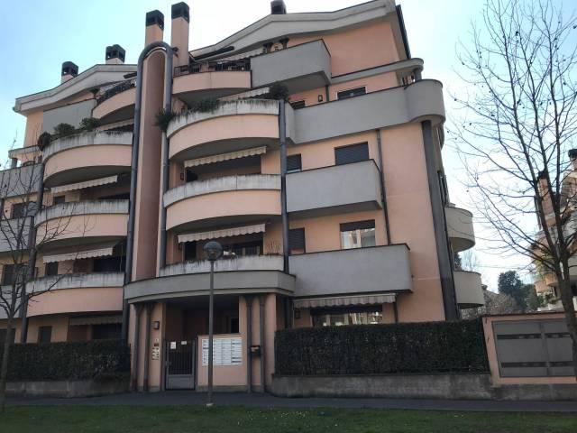 Appartamento in ottime condizioni arredato in affitto Rif. 5737740