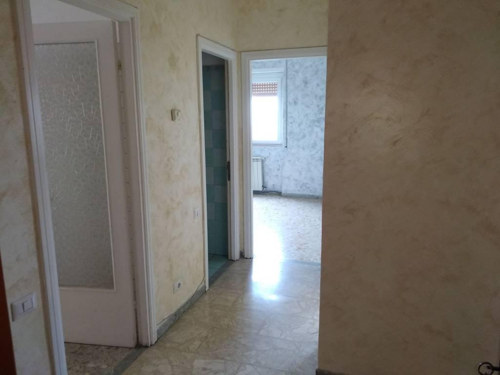 Appartamento in buone condizioni in affitto Rif. 9085792