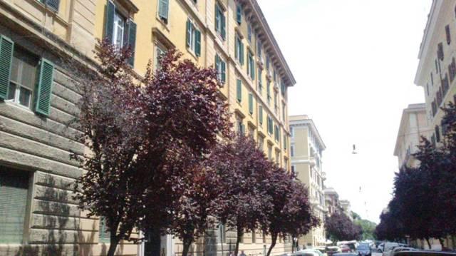 Appartamenti in affitto a roma in zona rione prati cerca for Prati roma affitto