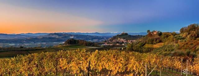 Terreno Agricolo in vendita a Santa Vittoria d'Alba, 9999 locali, prezzo € 100.000 | CambioCasa.it
