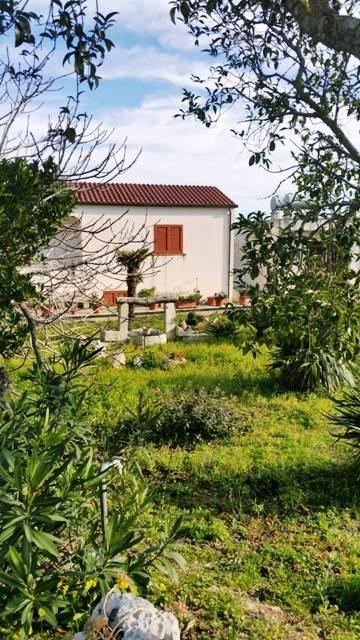 Villa in Vendita a Uggiano La Chiesa Periferia: 5 locali, 121 mq