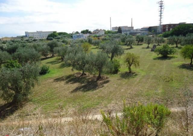Terreno commerciale in Vendita a Bari Periferia Est: 7905 mq