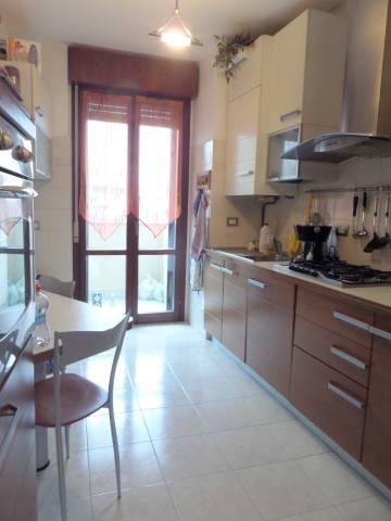 Appartamento in ottime condizioni in affitto Rif. 5997589
