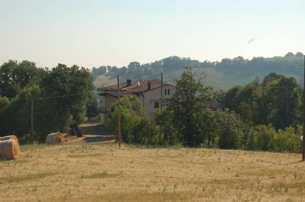 Terreno Agricolo in vendita a Savignano sul Panaro, 9999 locali, prezzo € 450.000 | CambioCasa.it